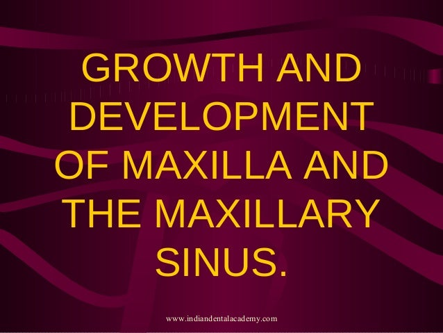 GROWTH AND DEVELOPMENT OF MAXILLA AND THE MAXILLARY SINUS. www.indiandentalacademy.com