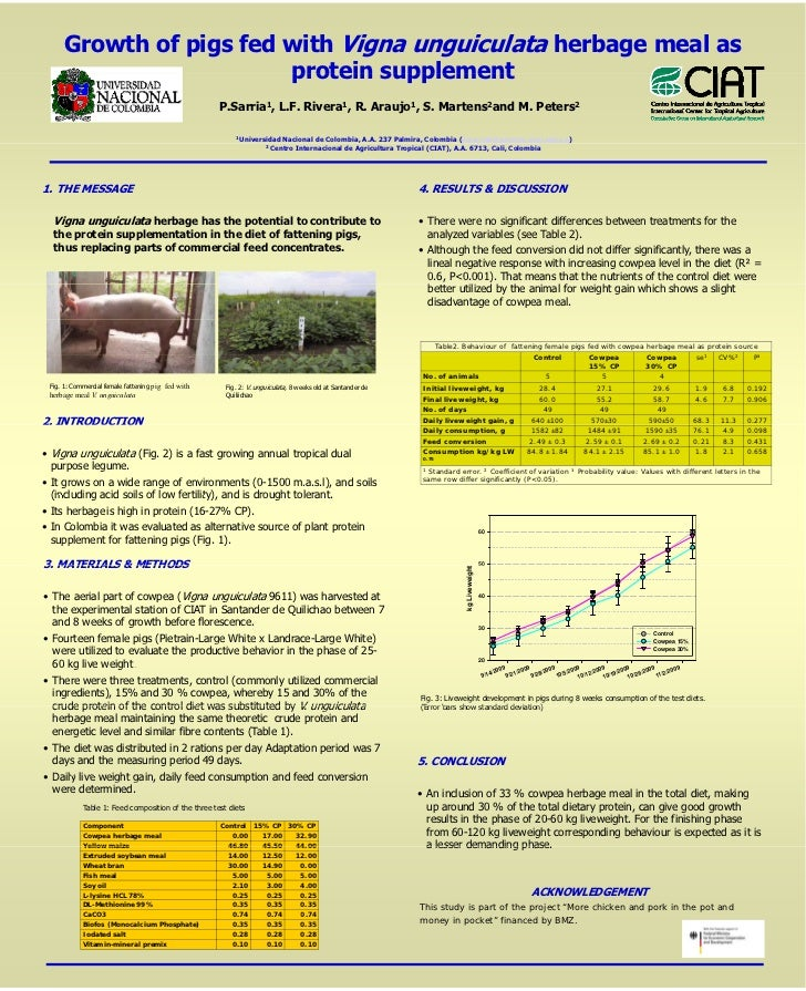 Growth of pigs fed with Vigna unguiculata herbage meal as                          protein supplement                     ...