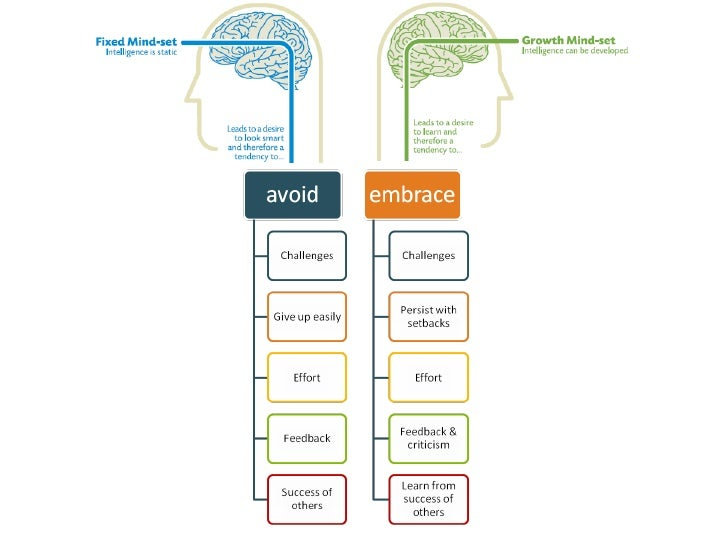 brainology dweck