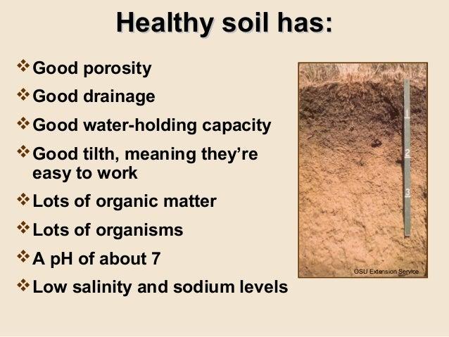 Grow your own nevada fall 2011 soil amendments for Soil amendments