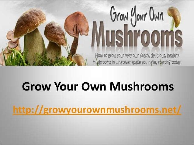 Grow Your Own Mushrooms http://growyourownmushrooms.net/