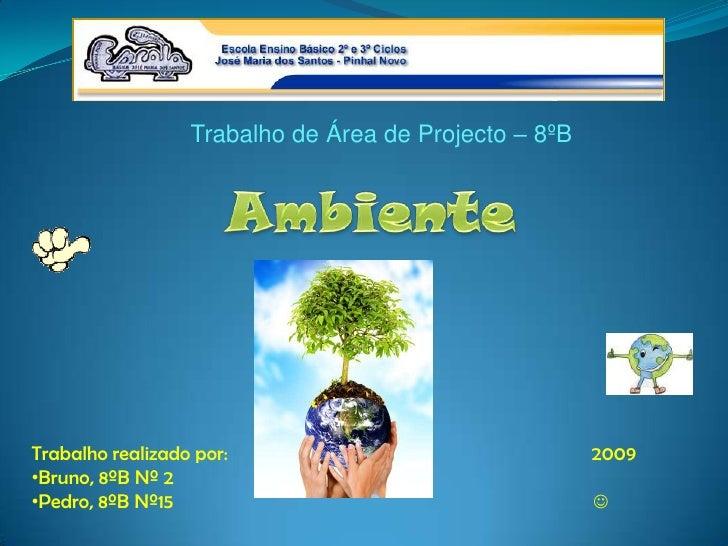 Trabalho de Área de Projecto – 8ºB<br />Ambiente<br />Trabalho realizado por:                                             ...