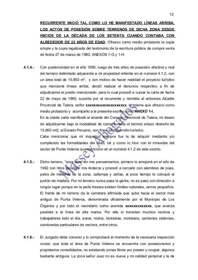 12          RECURRENTE INICIÓ TAL COMO LO HE MANIFESTADO LÍNEAS ARRIBA,          LOS ACTOS DE POSESIÓN SOBRE TERRENOS DE D...