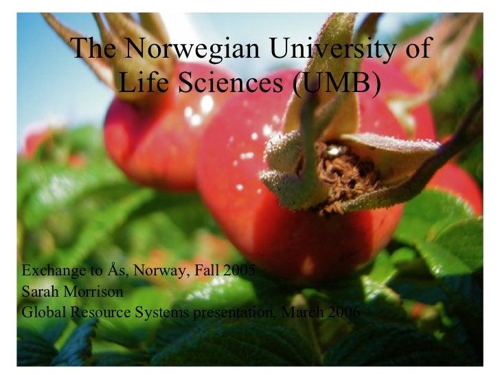 The Norwegian University of Life Sciences (UMB) <ul><li>Exchange to Ås, Norway, Fall 2005 </li></ul><ul><li>Sarah Morrison...