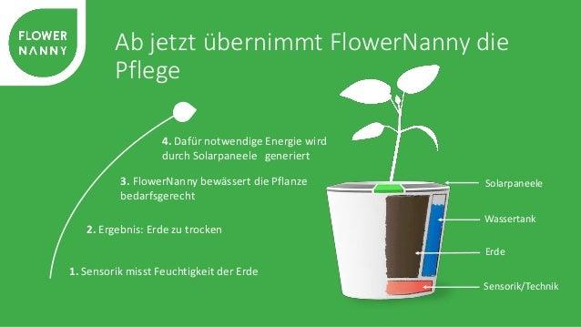 Die FlowerNanny bietet Mehrwert für alle  Wasserbedarf per Touch einstellen,  Pflanze mit Saat-Topf hinein stellen  und sc...