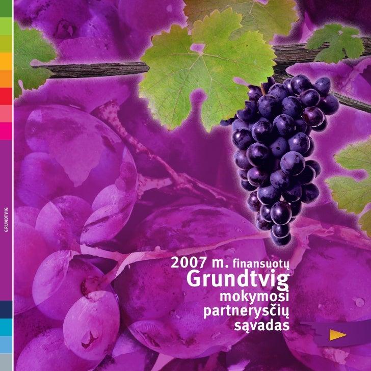 GrundtviG                 2007 m. finansuotų               Grundtvig                   mokymosi                 partnerysč...