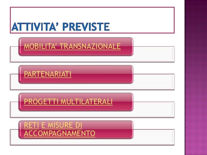 MOBILITA' TRANSNAZIONALE   PARTENARIATI   PROGETTI MULTILATERALI   RETI E MISURE DI ACCOMPAGNAMENTO