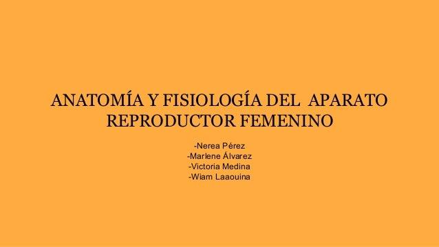 ANATOMÍA Y FISIOLOGÍA DEL APARATO REPRODUCTOR FEMENINO -Nerea Pérez -Marlene Álvarez -Victoria Medina -Wiam Laaouina