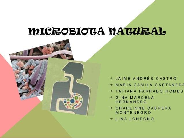 MICROBIOTA NATURAL           JAIME ANDRÉS CASTRO           M A R Í A C A M I L A C A S TA Ñ E D A           TAT I A N A...