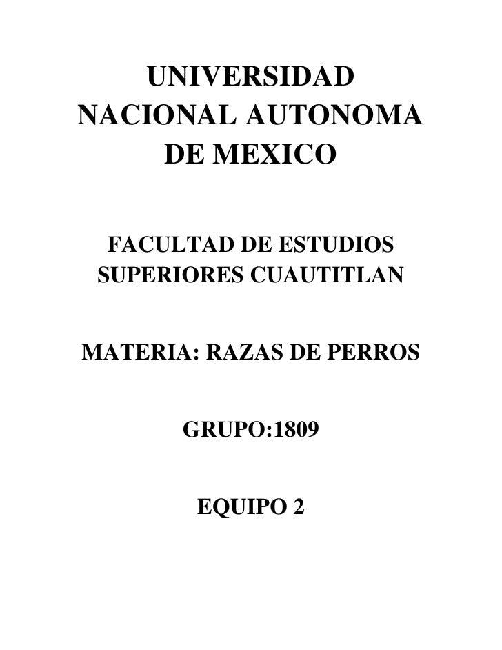 UNIVERSIDAD NACIONAL AUTONOMA      DE MEXICO    FACULTAD DE ESTUDIOS  SUPERIORES CUAUTITLAN   MATERIA: RAZAS DE PERROS    ...