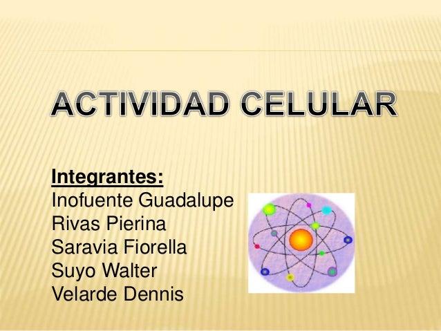 Integrantes: Inofuente Guadalupe Rivas Pierina Saravia Fiorella Suyo Walter Velarde Dennis