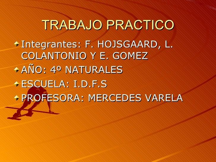 TRABAJO PRACTICO <ul><li>Integrantes: F. HOJSGAARD, L. COLANTONIO Y E. GOMEZ </li></ul><ul><li>AÑO: 4º NATURALES </li></ul...
