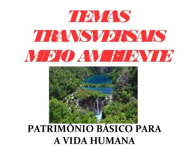 TEMAS TRANSVERSAIS MEIO AMBIENTE PATRIMÔNIO BÁSICO PARA A VIDA HUMANA