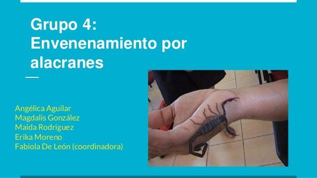 Grupo 4: Envenenamiento por alacranes Angélica Aguilar Magdalis González Maida Rodriguez Erika Moreno Fabiola De León (coo...