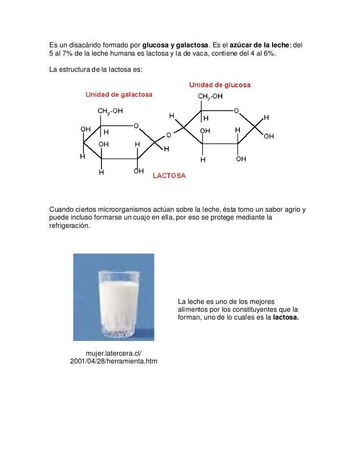 Es un disacárido formado por glucosa y galactosa. Es el azúcar de la leche; del5 al 7% de la leche humana es lactosa y la ...
