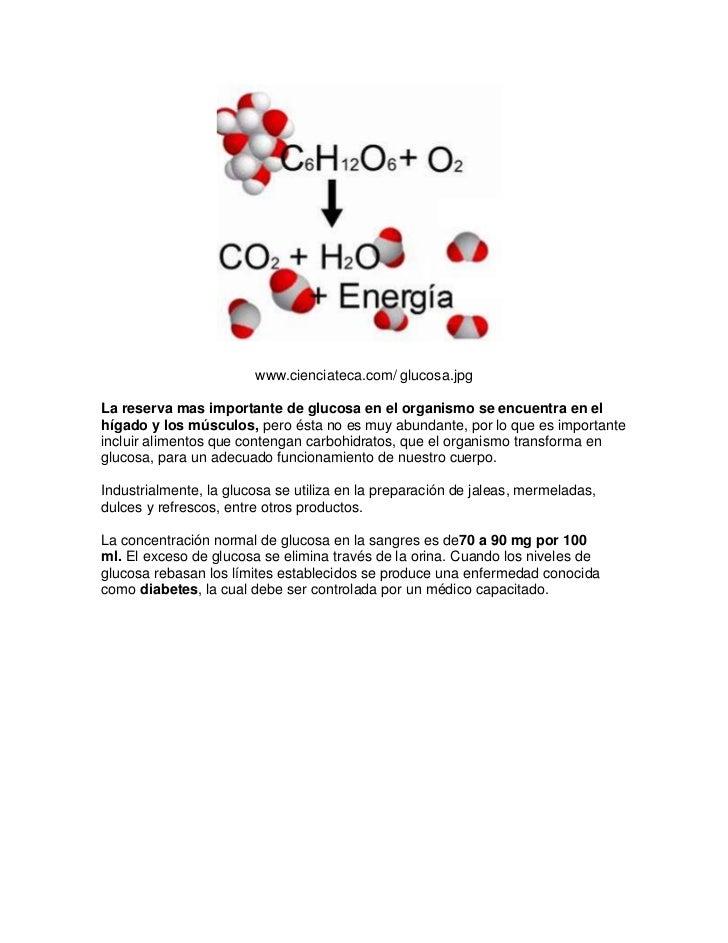 www.cienciateca.com/ glucosa.jpgLa reserva mas importante de glucosa en el organismo se encuentra en elhígado y los múscul...