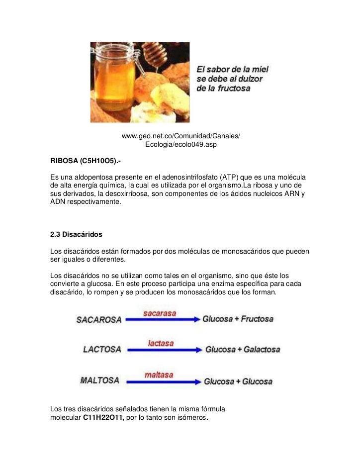 www.geo.net.co/Comunidad/Canales/                            Ecologia/ecolo049.aspRIBOSA (C5H10O5).-Es una aldopentosa pre...