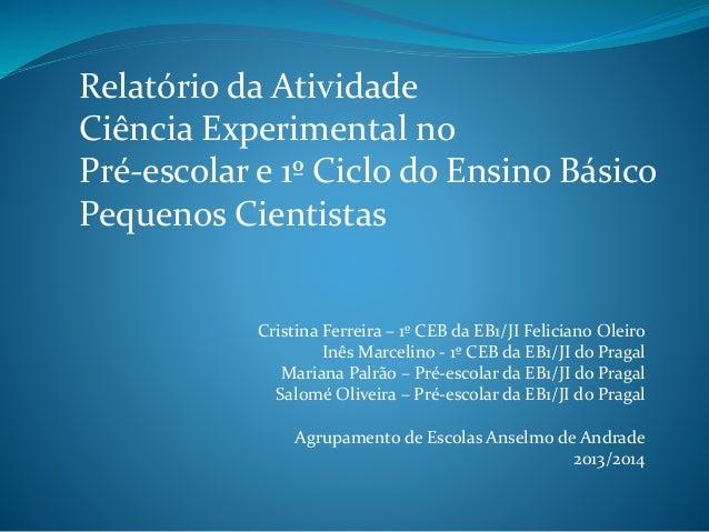 Relatório da Atividade  Ciência Experimental no  Pré-escolar e 1º Ciclo do Ensino Básico  Pequenos Cientistas  Cristina Fe...