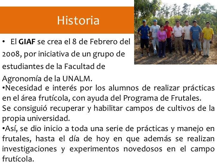 Grupo de investigacion en arboles frutales giaf for Investigacion de arboles