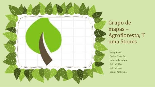 Grupo de mapas – Agrofloresta, T uma Stones Integrantes: Carlos Eduardo Isabella Carolina Gabriel Silva Gabriel Nery Danie...