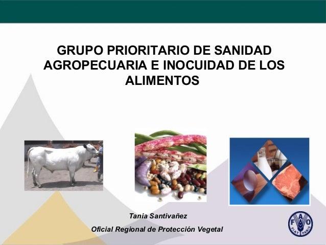 GRUPO PRIORITARIO DE SANIDAD AGROPECUARIA E INOCUIDAD DE LOS ALIMENTOS  Tania Santivañez Oficial Regional de Protección Ve...