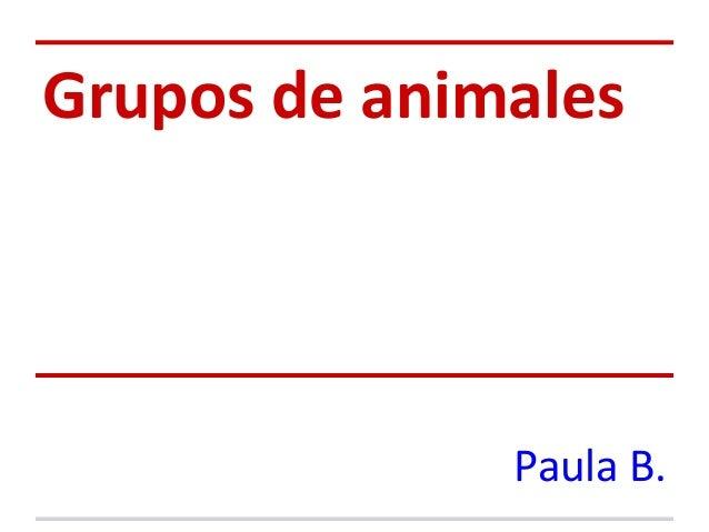 Grupos de animales              Paula B.