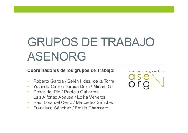 GRUPOS DE TRABAJO ASENORG Coordinadores de los grupos de Trabajo: • Roberto García / Belén Hdez. de la Torre • Yolanda Car...