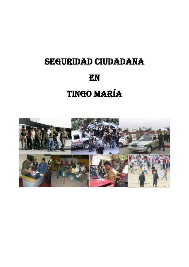 Seguridad ciudadana En Tingo María