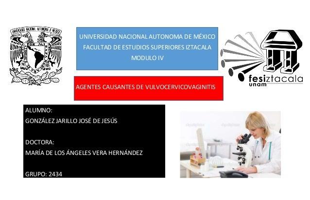 UNIVERSIDAD NACIONAL AUTONOMA DE MÉXICO FACULTAD DE ESTUDIOS SUPERIORES IZTACALA MODULO IV ALUMNO: GONZÁLEZ JARILLO JOSÉ D...
