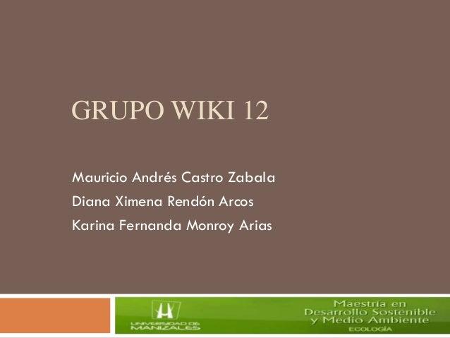 GRUPO WIKI 12 Mauricio Andrés Castro Zabala Diana Ximena Rendón Arcos Karina Fernanda Monroy Arias