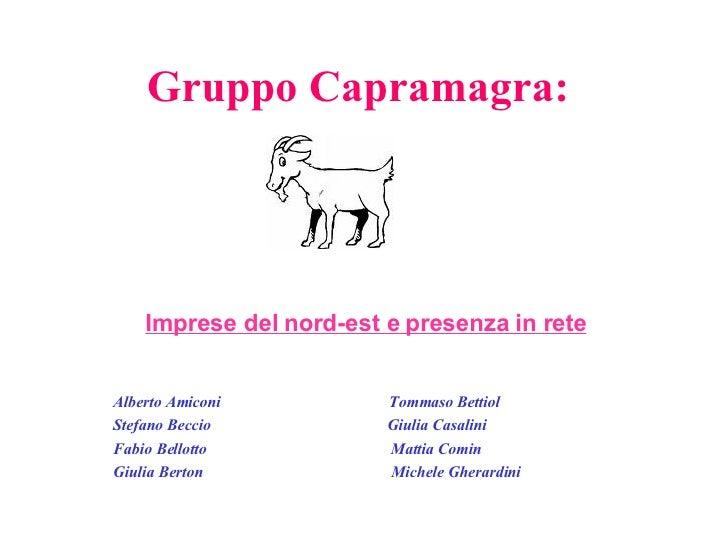 Gruppo Capramagra:   Alberto Amiconi  Tommaso Bettiol Stefano Beccio  Giulia Casalini Fabio Bellotto  Mattia Comin Giulia ...