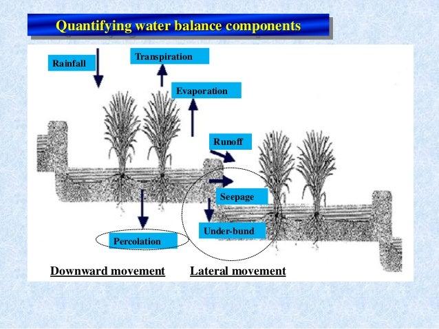 RainfallTranspirationEvaporationRunoffSeepageUnder-bundPercolationLateral movementDownward movementQuantifying water balan...