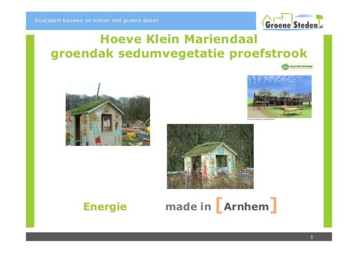 Duurzaam bouwen en wonen met groene daken           Hoeve Klein Mariendaal     groendak sedumvegetatie proefstrook        ...