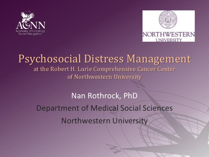Psychosocial Distress Management at the Robert H. Lurie Comprehensive Cancer Center of Northwestern University<br />Nan Ro...