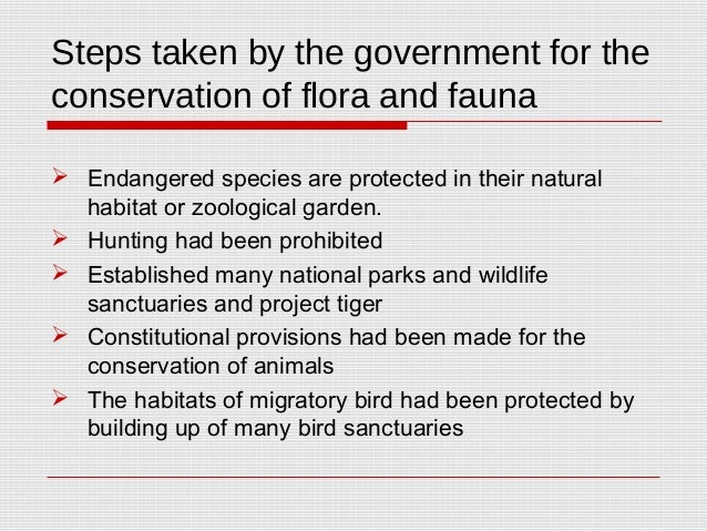essay on protection of flora and fauna Give me an short essay about flora and fauna 011-40705050 or call me both flora and fauna are collective terms because these words always refer to the.