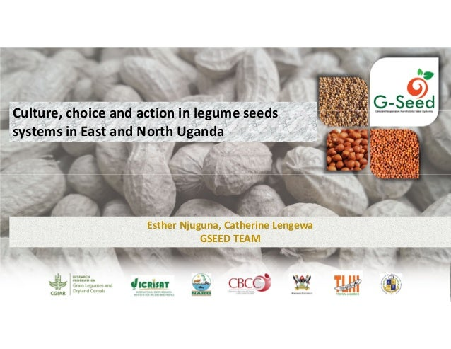 Culture, choice and action in legume seeds  systems in East and North Uganda Esther Njuguna, Catherine Lengewa GSEED TEAM