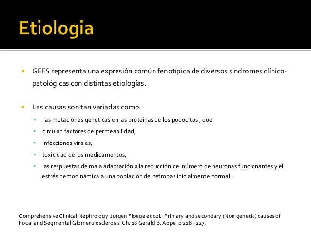 ¡ GEFS  representa  una  expresión  común  fenotípica  de  diversos  síndromes  clínico-‐ patológicas...