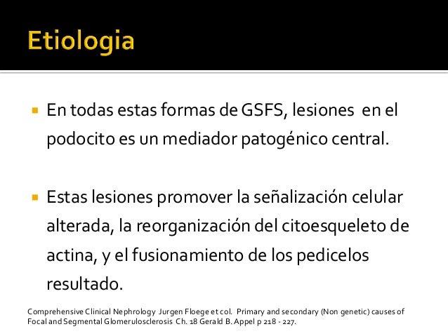 ¡ En  todas  estas  formas  de  GSFS,  lesiones    en  el   podocito  es  un  mediador  pato...