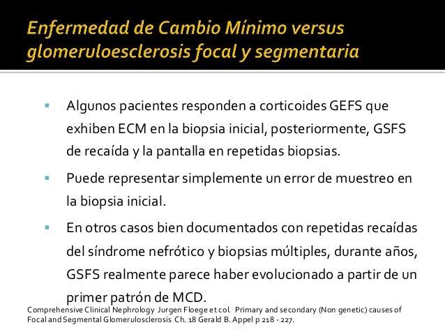 § Algunos  pacientes  responden  a  corticoides  GEFS  que   exhiben  ECM  en  la  biopsia  inic...