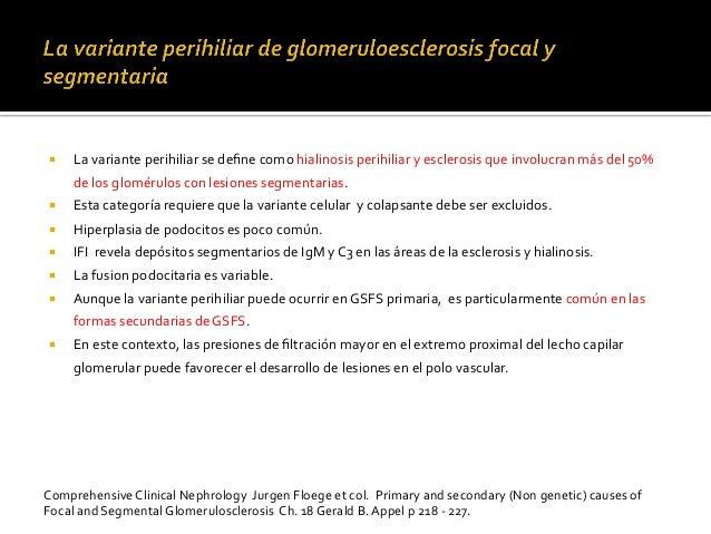 ¡ La  variante  perihiliar  se  define  como  hialinosis  perihiliar  y  esclerosis  que  involucra...