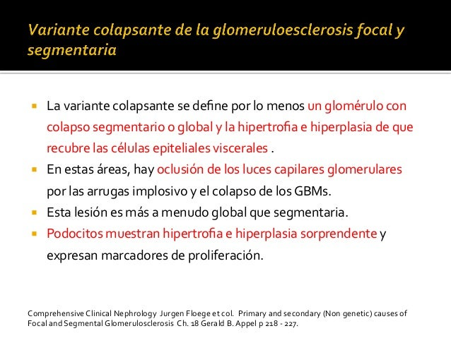 ¡ La  variante  colapsante  se  define  por  lo  menos  un  glomérulo  con   colapso  segmentario...