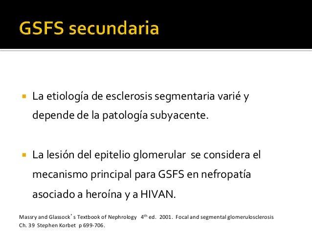 ¡ La  etiología  de  esclerosis  segmentaria  varié  y   depende  de  la  patología  subyacente. ...