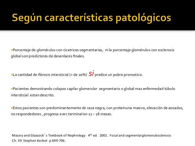 ¡Porcentaje  de  glomérulos  con  cicatrices  segmentarias,    ni  la  porcentaje  glomérulos  c...