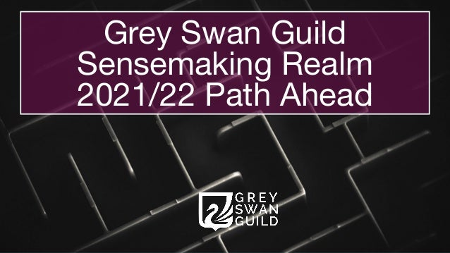 Grey Swan Guild Sensemaking Realm  2021/22 Path Ahead