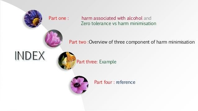 Harm minimisation for alcohol Slide 2
