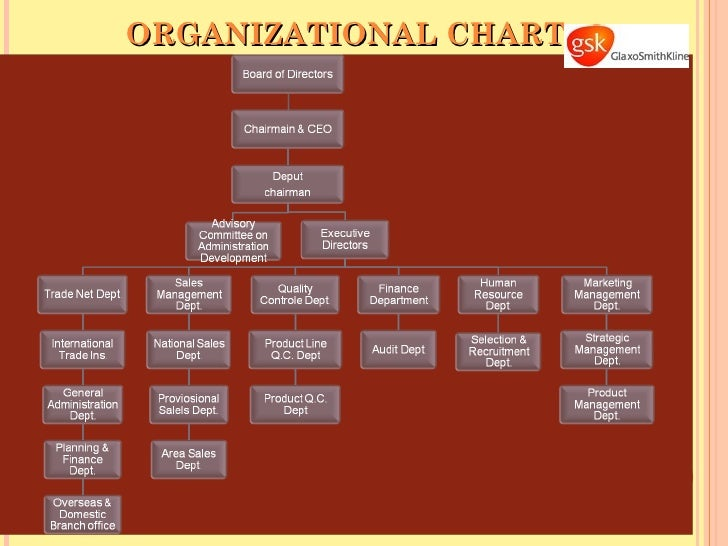 glaxosmithkline organisational structure The structure of an organization can take many forms that eventually are influenced by factors like purpose, size, tasks intricacies, external environment and its culture products, services or locality also determines organizational structures.