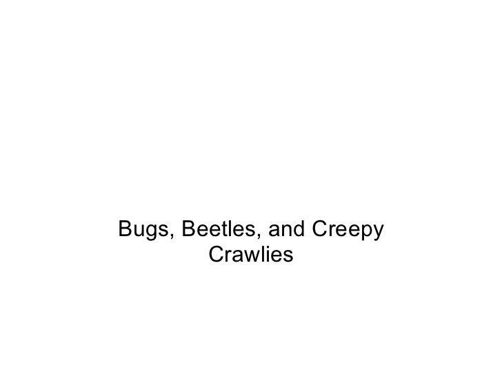 Bugs, Beetles, and Creepy Crawlies