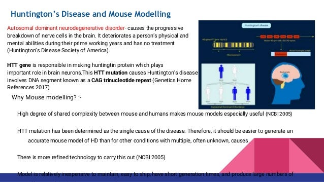 Group 7 Knock In Mouse Model Used For Disease Modelling