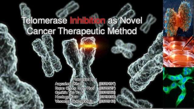Telomerase Inhibition as Novel Cancer Therapeutic Method Presented By : Aayushree Kharel (0323131) Bryan Chong Boon Hooi (...