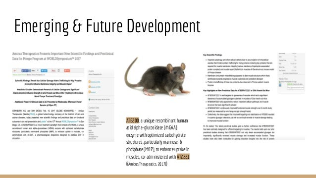 knockout mouse presentation Mouse models can be useful for increasing the understanding of lung tumorigenesis and assessing the potential of chemopreventive agents we explored the role of inflammation in lung tumor development in mice with knockout of the tumor suppressor gprc5a.